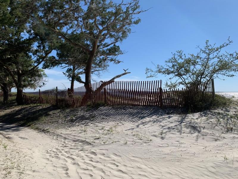 Jekyll Island Beaches Driftwood Beach
