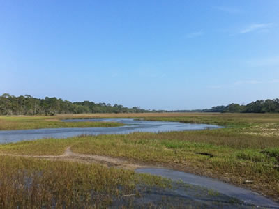 Jekyll Island Marshes and Wetlands