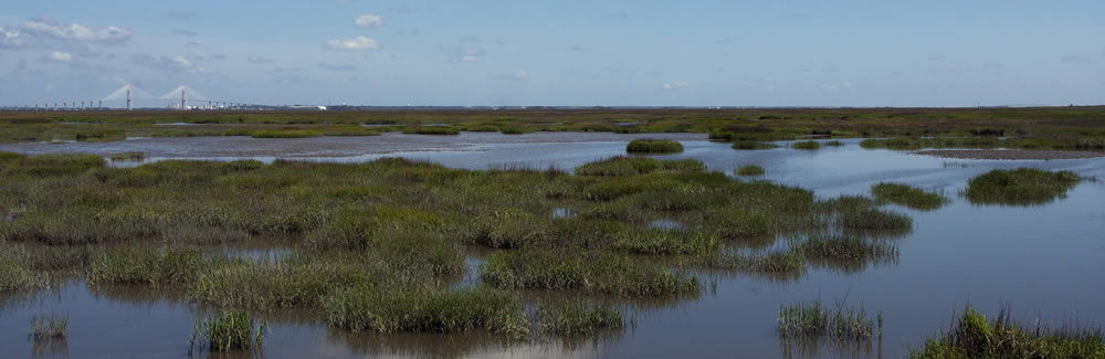 Jekyll Island Guide The Official Website Of Jekyll Island And The